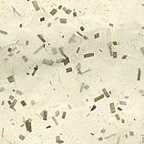 Coconut Confetti