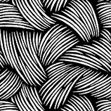 Fronds Black and White